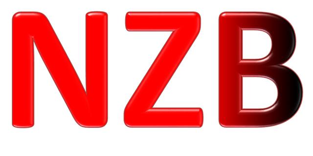 nzb_logo_nzb_only_